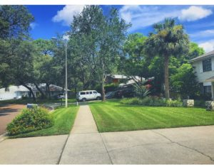 Apollo beach lawn care service - Halo Lawn Care