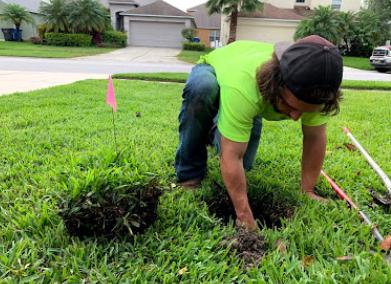Sprinklers repair Tampa
